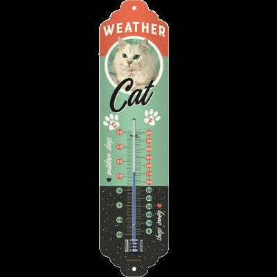 wheater-cat